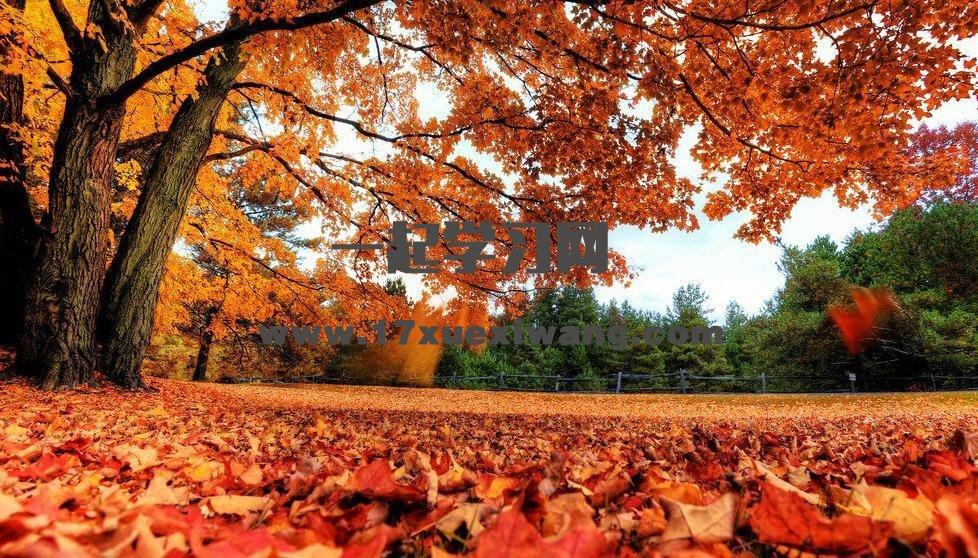 秋天的诗歌
