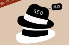 黑帽SEO技术好学吗,网上的视频
